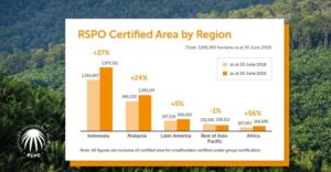 According to the RSPO Impact Report 2019, RSPO members make progress in the avoidance of greenhouse gas (GHG) emissions, the inclusion of smallholders and growth of certified land and invested more than US$23 million in restoration projects (graphic courtesy RSPO).